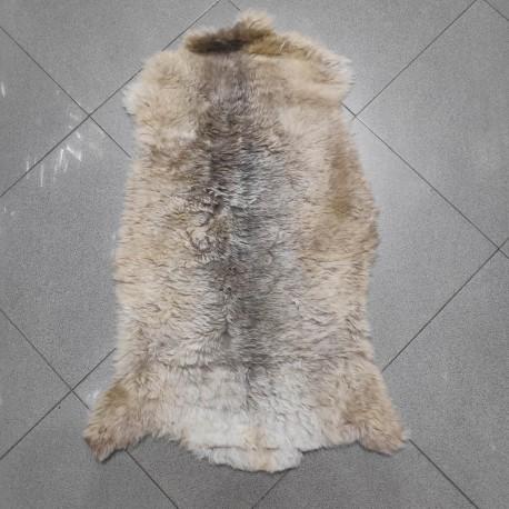 پوست گوسفند csh6255-sheep skin