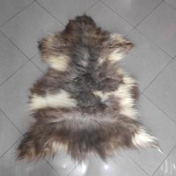پوست گوسفند  csh6260-sheep skin