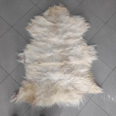 پوست گوسفند  csh6262-sheep skin