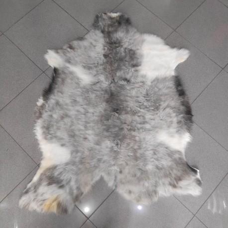 پوست گوسفند  csh6264-sheep skin