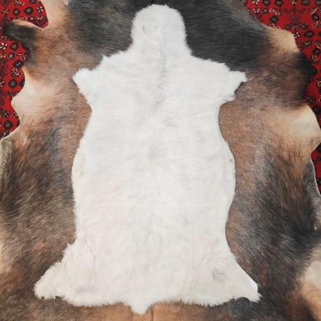 پوست گوسفند csh6258-sheep skin