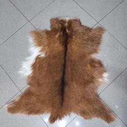 پوست بز پادری -cg4187 goat rug
