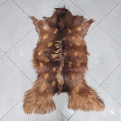 پوست بز پادری -cg4189 goat rug