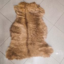 پوست گوسفند csh6261-sheep skin