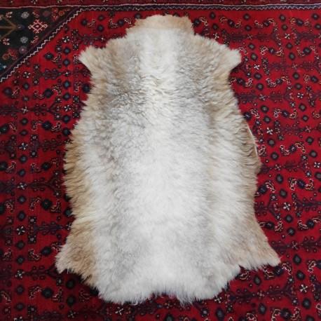 پوست گوسفند csh6060